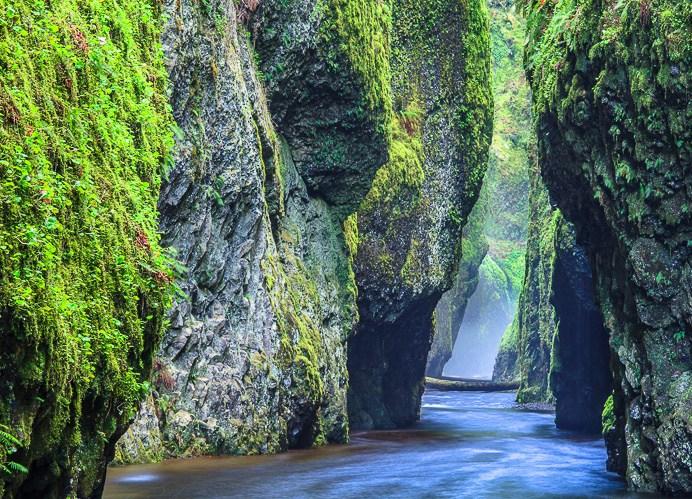 Oneonta Gorge I