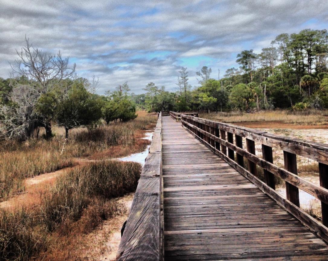 Skidaway-Island-State-Park-Savannah-GA-Moon-River-District