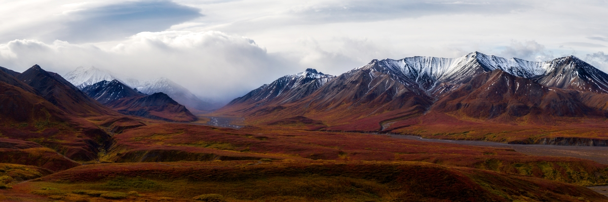 Denali National Park | Alaska | Sightseeing